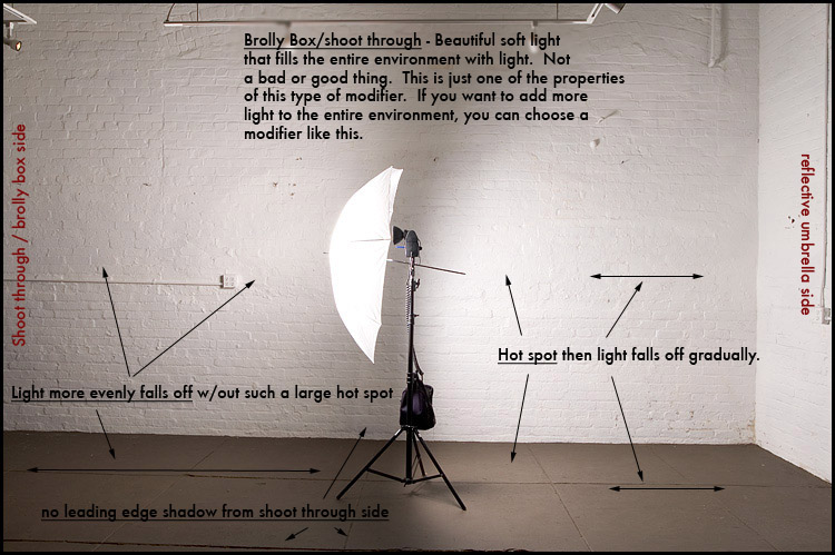 How To Use Umbrella Lights Custom Reflect Off Umbrellas Or Shoot Through Studio And Lighting